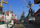 Экспорт морских биоресурсов через Владивостокскую таможню упал на 12%
