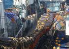 Моряков призвали высказаться в защиту принципов отрасли