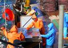 Профсоюз просит государство определиться с ролью отрасли