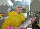 Для женщин откроют больше рыбацких профессий