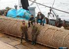 Исследование рынка труда стартует в рыбной отрасли
