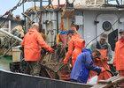 На альтернативную службу в рыбаки