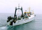 Мурманские рыбаки выступили против «квот под киль»