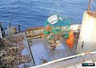 Росрыболовство рассчитывает обновить половину крабового флота