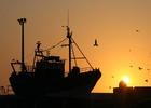 Рыбацкие экипажи приостановят работу в знак протеста