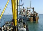 Рыбаки просят Президента вывести отрасль из управления Минсельхоза