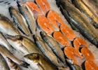 Глава государства поставил новые задачи по развитию рыбного хозяйства