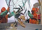 Регулятор соберет рыбаков для обсуждения крабовых квот