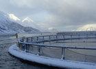 Норвежские власти озвучили меры по поддержке лососеводов