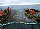 Рыба увязла в тарифах