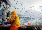 О серьезных проблемах рассказали мурманские рыбаки