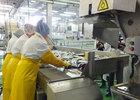 Эмбарго перенаправило поставки сахалинской рыбы